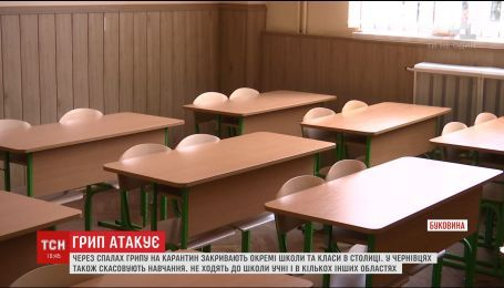 В Украине массово закрывают школы на карантин из-за вспышки гриппа