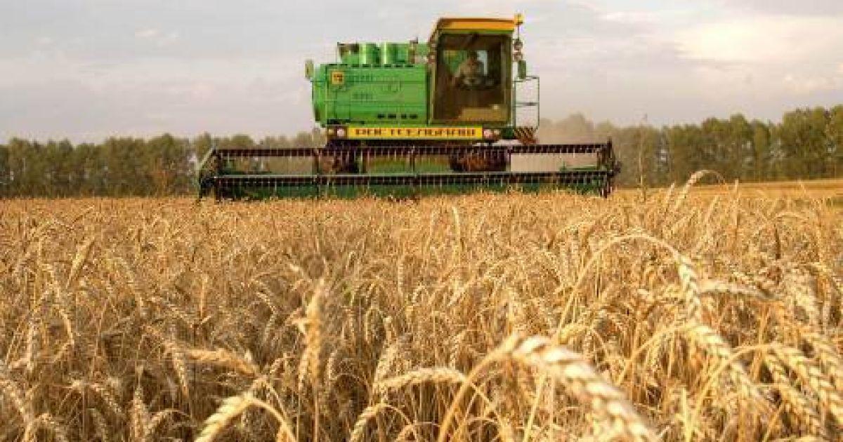 Крым может остаться без урожая из-за недостатка воды