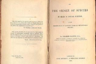 Рідкісну книгу Дарвіна «Походження видів» продали за 172 тисячі доларів
