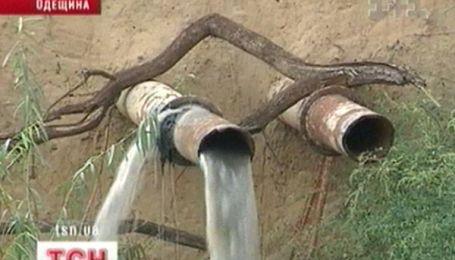 Дністровський лиман заливає каналізація