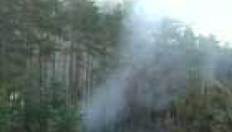 На Луганщині горять ліси