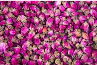 Садовая роза: мистические свойства и практическая польза