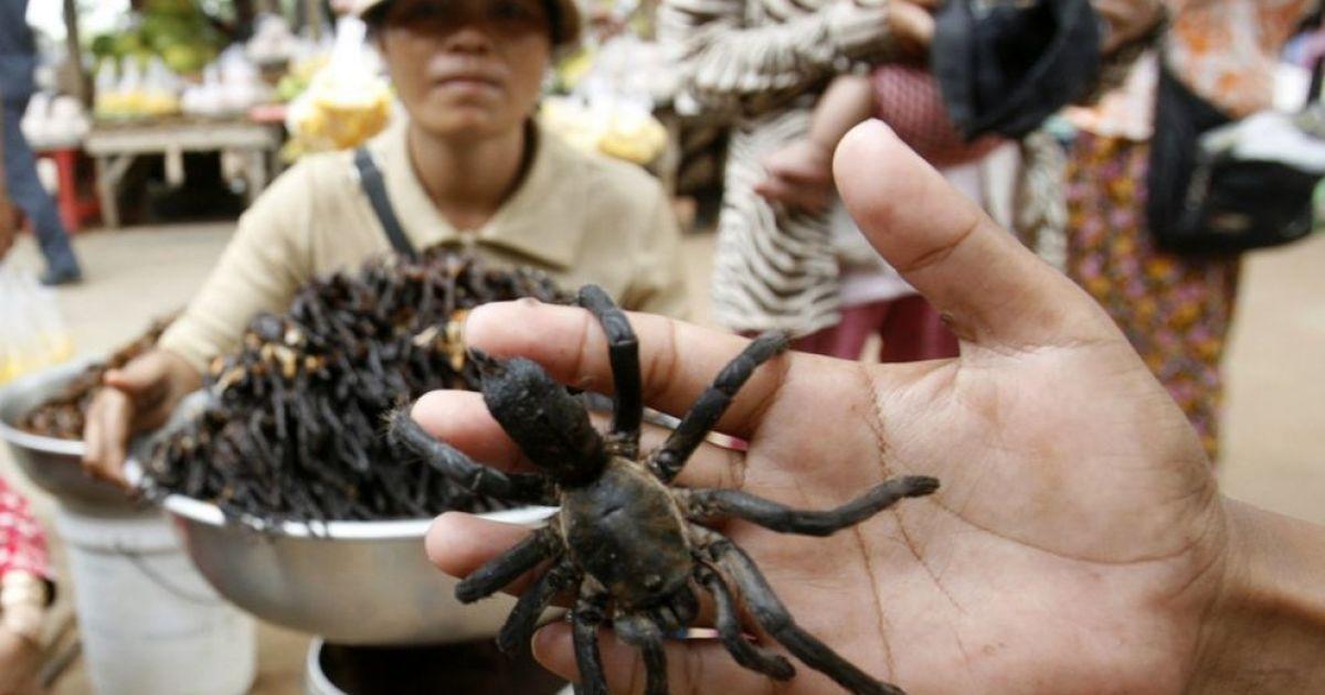 На автостанції камбоджійської провінції Кампонгтям вуличні торговці продають хрустких павуків @ bigpicture.ru
