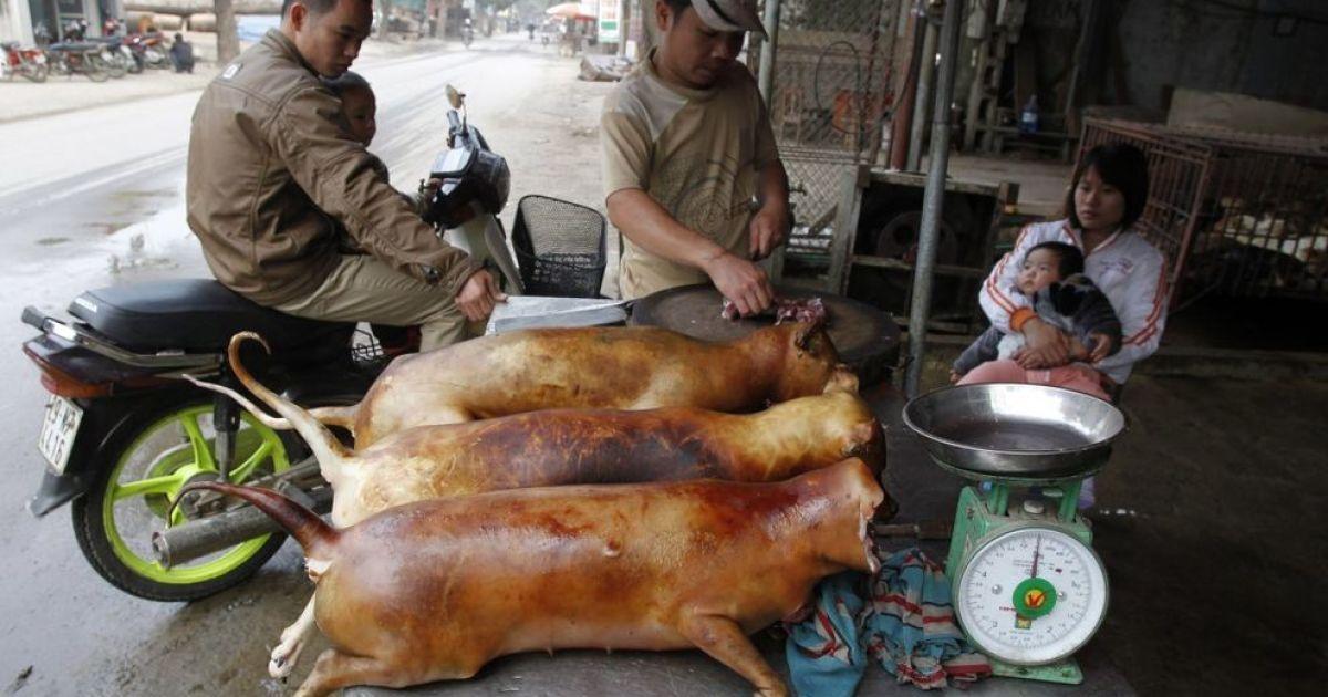 Цей чоловік з В'єтнаму готує до продажу собак. Собаче м'ясо - традиційна їжа для багатьох народів Східної Азії. @ bigpicture.ru