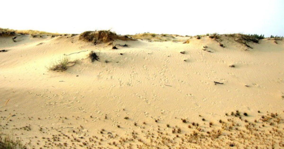Олешковские пески являются одной из наибольших пустынь в Европе @ oleshki.jimdo.com