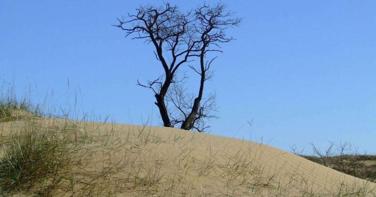 Олешковские пески являются природным парком @ robinzon.ks.ua