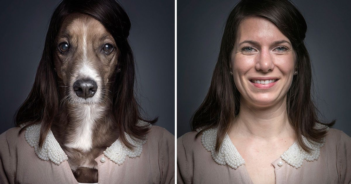 вышек сравнить человека с животным по фото третьей