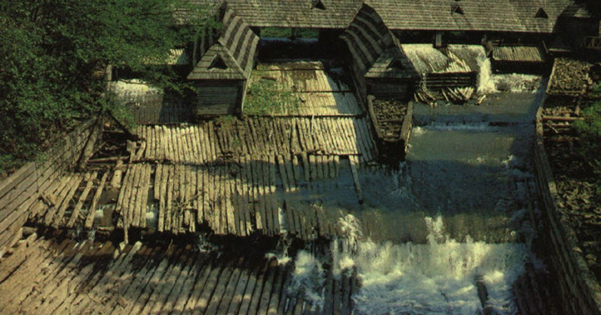 Музей леса и сплава находится вблизи озера @ karpaty.relax.com.ua