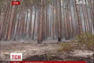 У Криму оголосили четвертий рівень пожежної небезпеки
