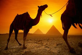 Украинские туристы уже трое суток не могут вылететь из Египта