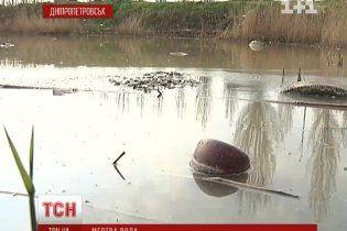 У Дніпропетровську сотні людей можуть підчепити інфекцію через смердюче озеро