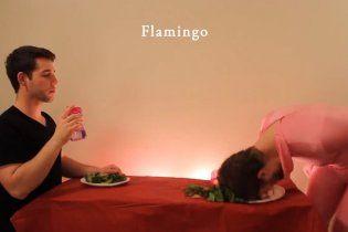 Хлопець підірвав інтернет, показавши, як їдять тварини (відео)