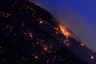 На Львівщині масштабну пожежу гасили більше 100 осіб