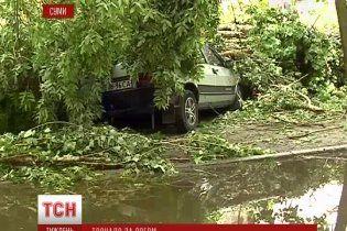 Для України поява торнадо може стати справжньою катастрофою