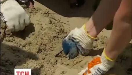 В Киеве убрали от мусора остров Любви