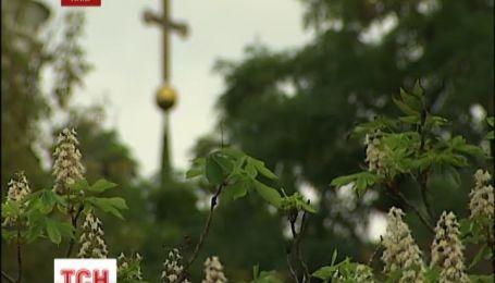 На Хрещатику знову розцвіли каштани