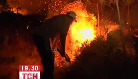 Сильні лісові пожежі охопили Старий світ