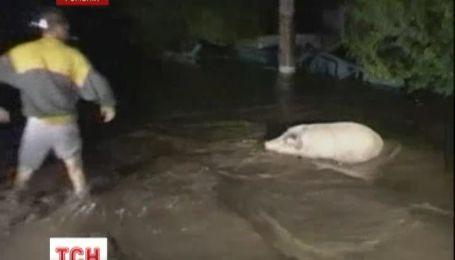 Наводнение заливает Румынию и отбирает жизни людей