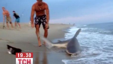 Рыболов поймал у берега двухметровую акулу и голыми руками вытащил ее из воды