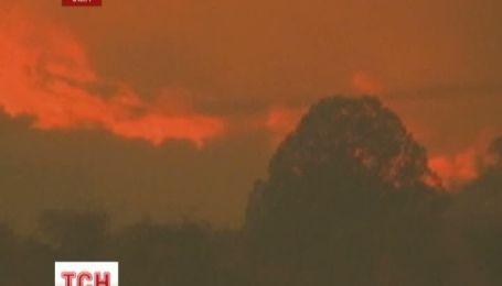У США під час гасіння потужних лісових пожеж загинули 19 вогнеборців