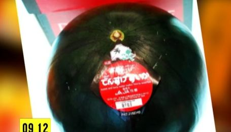 В Японії продали знаменитий чорний кавун за три тисячі доларів