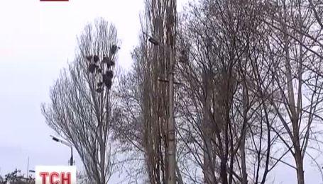 Штормовое предупреждение объявили в Крыму