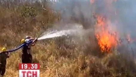 У Болівії вже третю добу не можуть загасити масштабну лісову пожежу