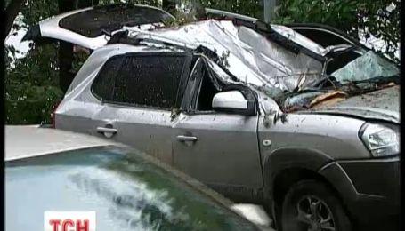 В центре Киева дерево разбило две машины