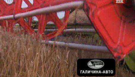 Збитковість виробництва зерна цьогоріч стане рекордною