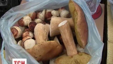 З початку грибного сезону вже зареєстровано 20 отруєнь