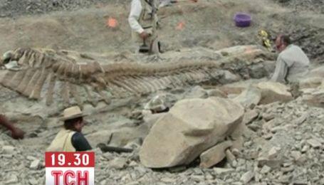 Мексиканские палеонтологи обнаружили пятиметровый хвост динозавра