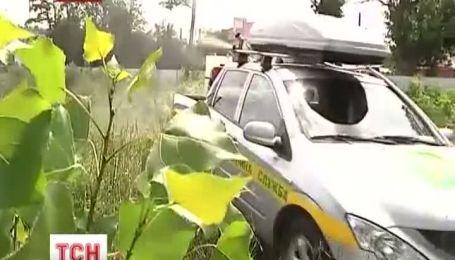 В Харькове началась охота на клещей