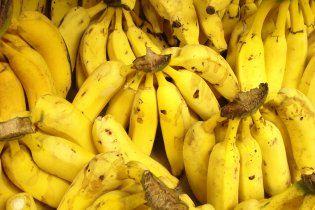 """На битву """"Дніпро"""" - """"Шахтар"""" не пускатимуть фанатів з бананами та апельсинами"""