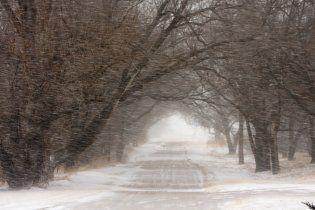 У середу в Україні потеплішає до 9 градусів