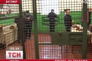 В'язень СІЗО з четвертої спроби повісився в камері на нитках зі светру
