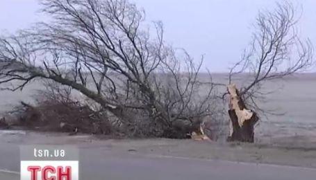 Негода накрила Південь України