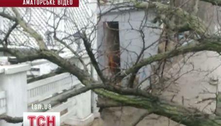 На Одещині почали масово падати дерева, а снігопад Немо захопив США