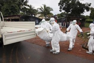 Ученые выяснили, от кого и как первая жертва Эбола заразилась вирусом