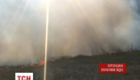 Пожарные два дня боролись с пожаром в Аскании Новой