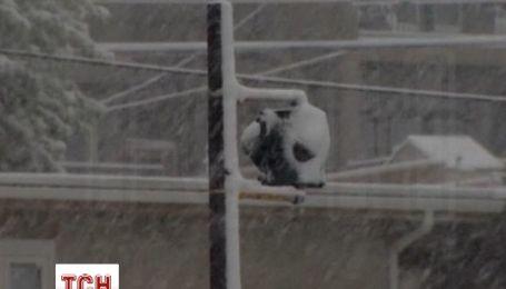В Канаде уже выпал первый снег