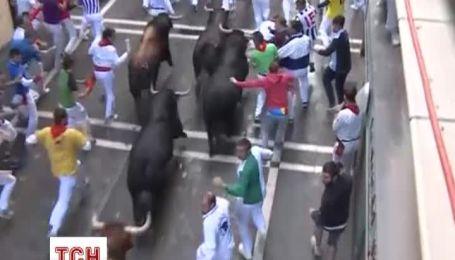 Семь человек госпитализированы после забега от быков в испанской Памплоне