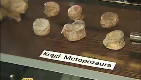Польська Селезія - подорож у часі до динозаврів