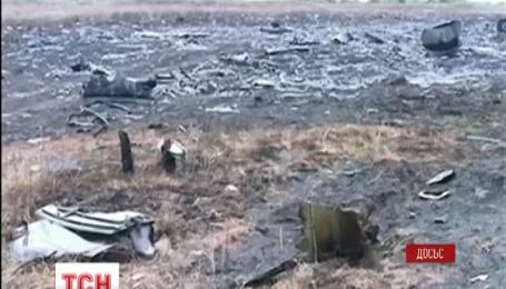 Нідерландські експерти ідентифікували сто тіл загиблих в катастрофі Боїнга