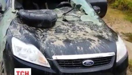 Бурий ведмідь у Сибірі роздер автівку мисливцю, який його поранив