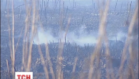 Столицу атакует пыль от тлеющих торфяников