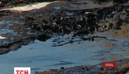 Вибух нафтопроводу на півдні Ізраїлю призвів до екологічної катастрофи