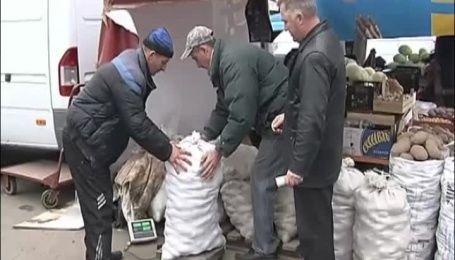 Эксперты посоветовали, как выбрать и где дешевле купить картошку на зиму