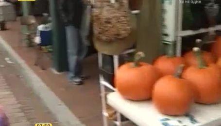 В США после Хэллоуина тыквы превращают в супы и запеканки