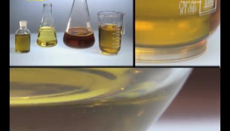 Неякісна оливкова олія шкодить імунітету
