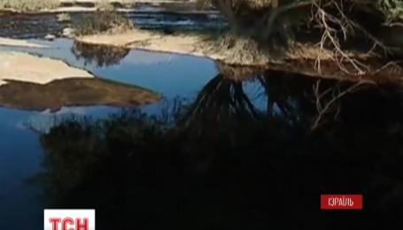В Ізраїлі долають наслідки екологічної катастрофи